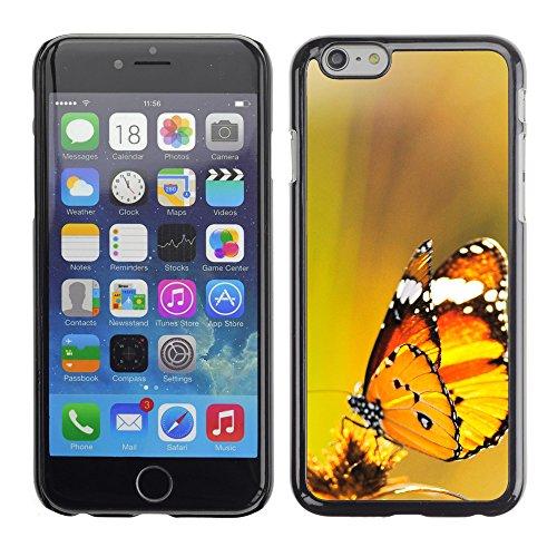 """Premio Sottile Slim Cassa Custodia Case Cover Shell // V00003954 deux papillons sont sortis à midi // Apple iPhone 6 6S 6G PLUS 5.5"""""""