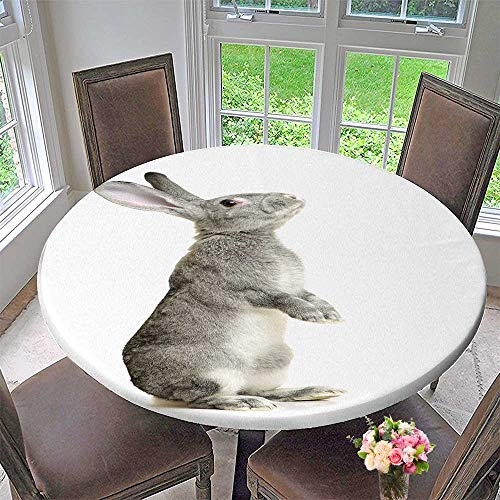 PINAFORE HOME Circular Table Cover Grey Rabbit on a White Background for Wedding/Banquet 67