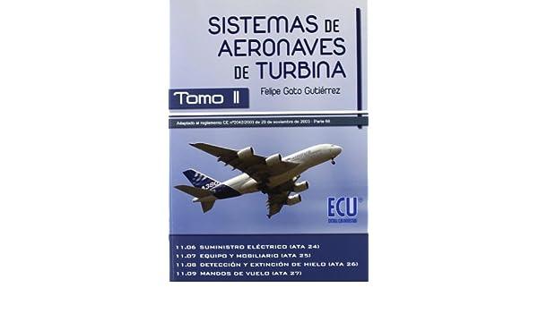 Tomo II: Felipe Gato Gutiérrez: 9788499480114: Amazon.com: Books