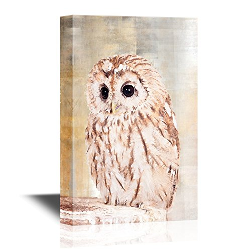 Hanging Owl (wall26 - Canvas Wall Art - Baby Owl - Gallery Wrap Modern Home Decor | Ready to Hang - 24x36 inches)
