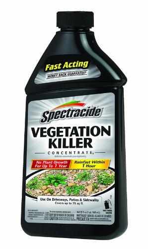 Spectracide Vegetation Killer Concentrate3