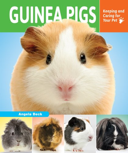 Guinea Pigs: Keeping and Caring for Your Pet