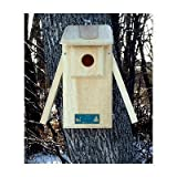 Coveside Bird Habitats Open 2-Side Bluebird Box House For Sale