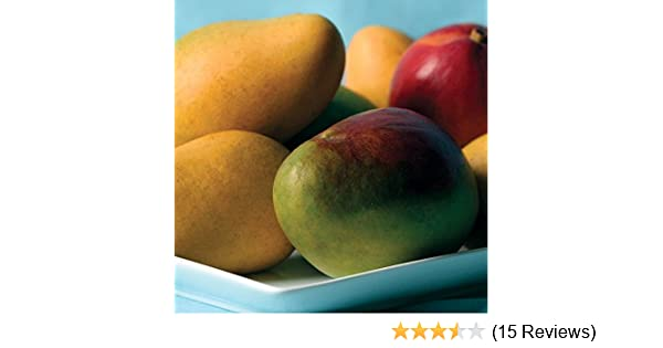6f27988edf3 Amazon.com   Mangos - 7 lbs - Mangos From the Fruit Company   Gourmet Fruit  Gifts   Grocery   Gourmet Food