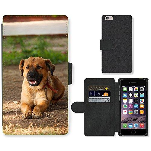 "Just Phone Cases PU Leather Flip Custodia Protettiva Case Cover per // M00128329 Adorable animal brun canin mignon // Apple iPhone 6 PLUS 5.5"""
