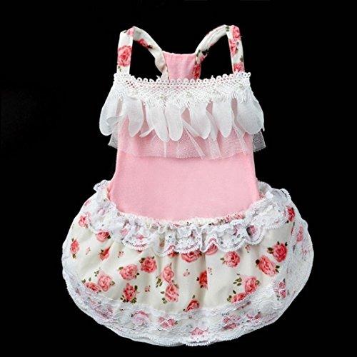 Pink Dog Skirt Ieason Pet Cat Dress Pet Lace Hot Clothes Tutu S Bow Sale wApqwa