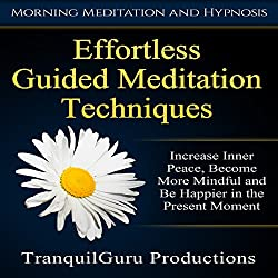 Effortless Guided Meditation Techniques