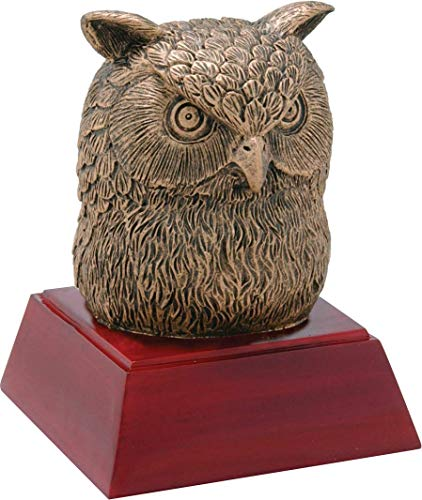 Trophy Crunch Wise Owl Mascot School Gift & Award - Free Custom Engraving