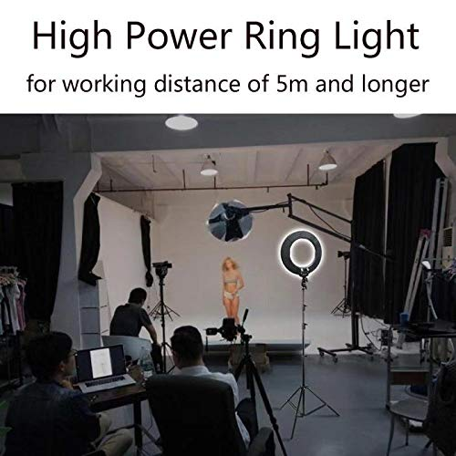 LOKFWORLD 14 Inches Ring Light Bi-color Dimmable LED Camera Studio Lights with Cellphone Holder, Hot Shoe Adapter Stand for Photographic Apparatus