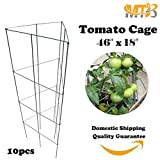 MTB Galvanized Triangular Folding Tomato Cage Plant Support Tower 18 inch by 46 inch, Pack of 10 sets (Also Sold as Pack of 1 set)