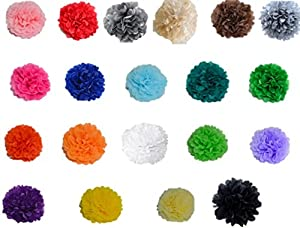 Tissue Paper Pom Poms Flowers Kit - 20 pcs of Colorful & Big Decoration- 20 cm Long for a Great Party, Birthday & Wedding Crafts