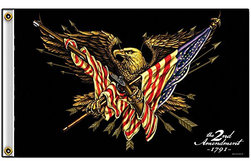 2nd Amendment Right to Bear Arms Eagle with Gun Polyester for sale  Delivered anywhere in USA