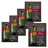 5x Bulldog B23 Steam Lager Yeast Craft Series Beer Yeast 10g for 20-25L