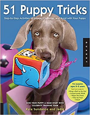 New Puppy Checklist: Puppy Training Guide