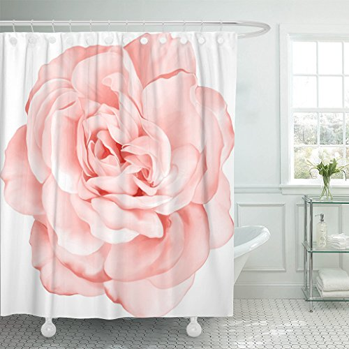 TOMPOP Shower Curtain Pink Pastel Beautiful Light Red Rose Flower Day Closeup Waterproof Polyester Fabric 78 x 72 Inches Set with Hooks