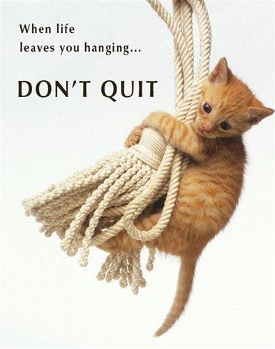 Don't Quit Cute Cat Kitten Animal Motivational Poster