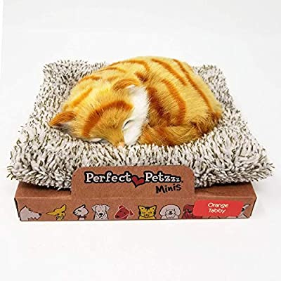 Perfect Petzzz Mini Baby Orange Tabby Kitten: Toys & Games