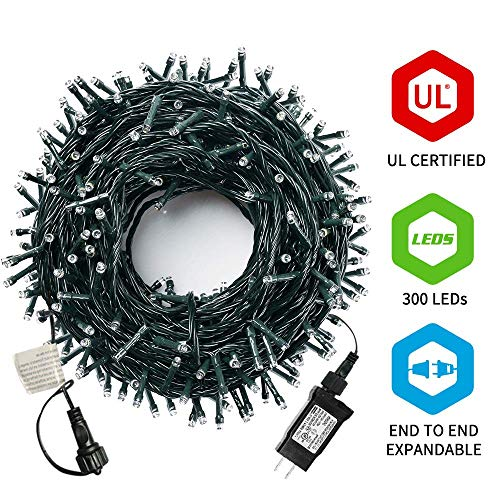 Outdoor Multi Function Christmas Lights in US - 1