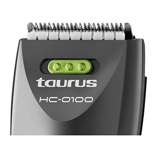 Taurus HC-0100 - Cortapelos, cuchillas de acero carbono, 30 minutos de autonomía, 2 peines: Amazon.es: Salud y cuidado personal