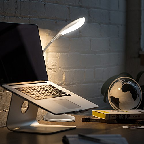Ominilight-Gooseneck-Desk-Lamp