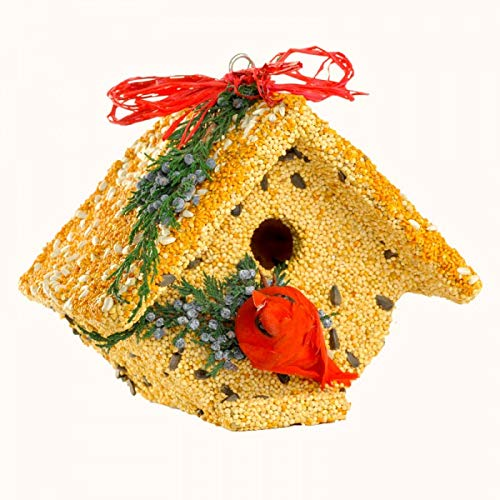 Mr. Bird Wren Casita Christmas w/Cardinal
