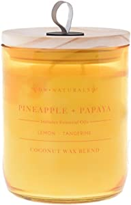 DW Home Richly Scented Pineapple +Papaya 2-Wick Candle 17.67oz In Glass