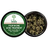 Best Acne Masks - TreeActiv Four-in-One Acne Treatment | Wash, Scrub, Mask Review