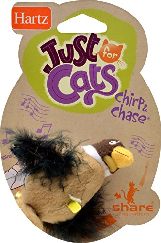 Hartz Chirp n Chase Cat Toy (Hartz Cat Toys)