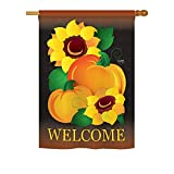 Breeze Decor H113029 Welcome Pumpkin Fall Harvest and Autumn Vertical Garden Flag, 28″ x 40″, Multicolor Review
