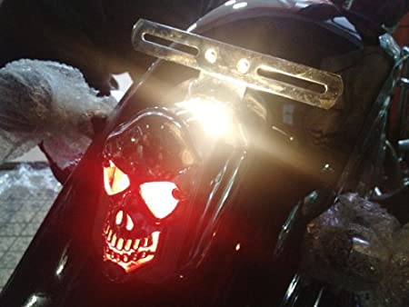 Amazon.com: Candance Skull placa de montaje lateral con luz ...