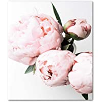 Nordic Poster Canvas Paintings Home Decorative Plant Pink Peony Flower Pictures Printed Poster For Living Room Wall Art