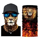HighlifeS Cycling Motorcycle Head Scarf Full Function More Colors Ski Motorcycle Neck Tube Warmer Cycling Biker Scarf Wind Face Mask (B)