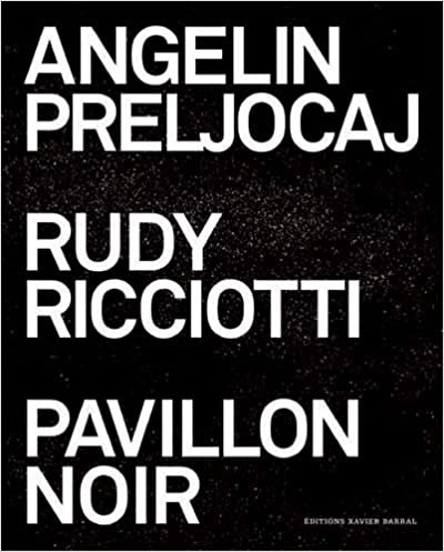 Lire Pavillon noir pdf
