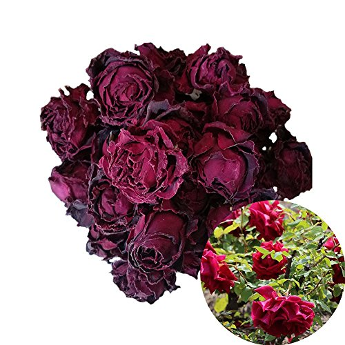 TooGet Fragrant Natural Deep Red Rose Buds Dark Rose Flowers Organic Dried Flower Tea,Herbal Tea, Culinary Food Grade - 2 OZ