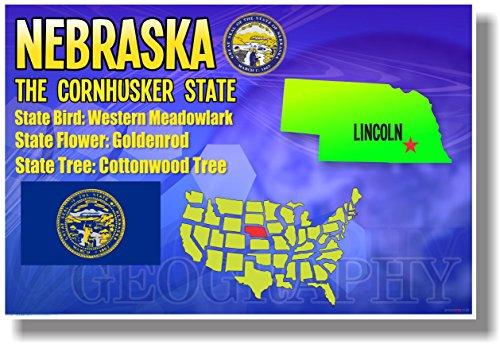 State Nebraska Flower Bird (Nebraska Geography - NEW U.S Travel Poster)