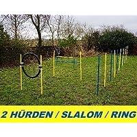 AGILITY - Kit débutant avec anneau de saut, slalom, haies, bleu/jaune
