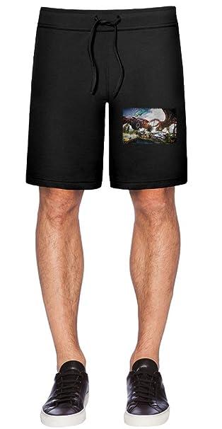 Trackmania Turbo Jump Pantalones cortos XX-Large: Amazon.es: Ropa y accesorios