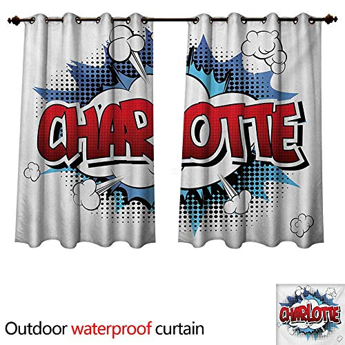 WilliamsDecor Charlotte Outdoor Curtains for Patio Sheer Female Name with French Origins in Retro Cartoon Design Explosion Effect and Dots W108 x L72(274cm x 183cm)