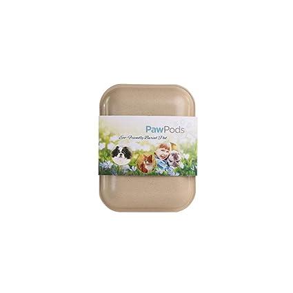 PAW cápsulas Biodegradable Caja de Pet, tamaño Mediano: Amazon.es ...