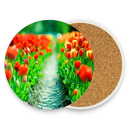 - CoolToiletLidCoverCC Path through the wonderful red tulips - spring Ceramic Coaster for Drinks 4