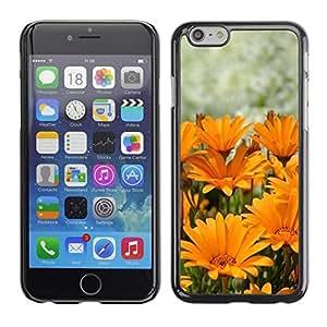 FECELL CITY // Duro Aluminio Pegatina PC Caso decorativo Funda Carcasa de Protección para Apple Iphone 6 Plus 5.5 // Summer Sun Yellow Orange Flower