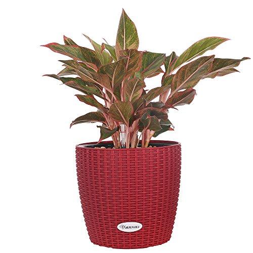 Self -Watering Planter Modern Decorative Flower Planter Resin Garden Planter Pot (Red)