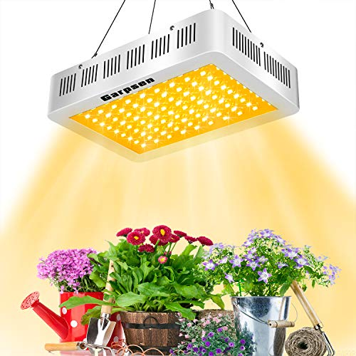 1000 Watt Led Grow Lights Cannabis in US - 6