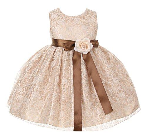 Cinderella Satin (Cinderella Couture Baby-Girls Champ Lace Dress Brn Sash & Cham Flw 18M L 1132B)