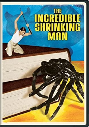 Image result for the incredible shrinking man poster