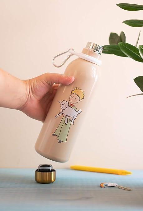 Grupo Erik Acier Inoxydable et Sans BPA Botella de Agua Acero Inoxidable con mosquetón El Principito, 500 ml: Amazon.es: Hogar