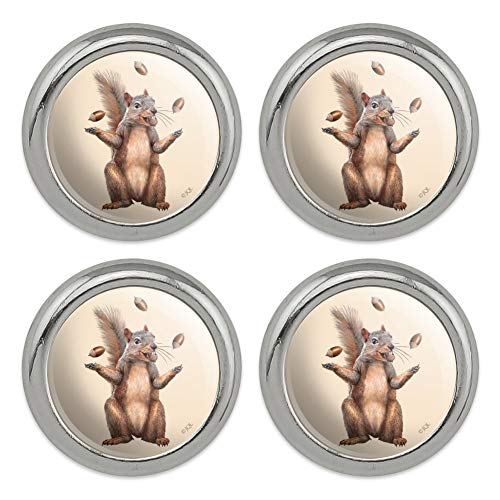 Squirrel Juggling His Nuts Crazy Funny Metal Craft Sewing Novelty Buttons - Set of 4 ()