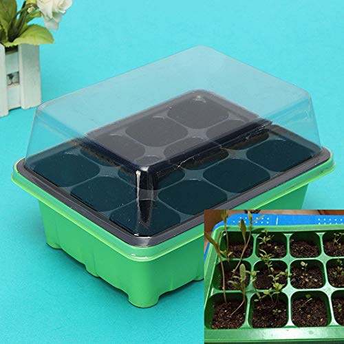 AT27clekca Seeds Grow Box Garden Tools Container 12 Cells Hole Plant Seeds Propagation Nursery Pot Seeding Grow Box Case Tray - Green + Black ()