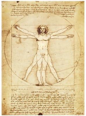 Vitruvian Man Leonardo da Vinci Poster Canvas Picture Art Print Premium Quality