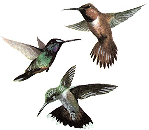 1982 Decal (Hummingbird Trio Item # 1982/C Waterslide Ceramic Decals By The Sheet (7/8